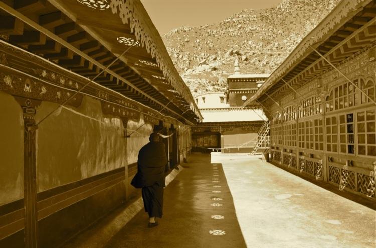 Tibet_RondoneR15