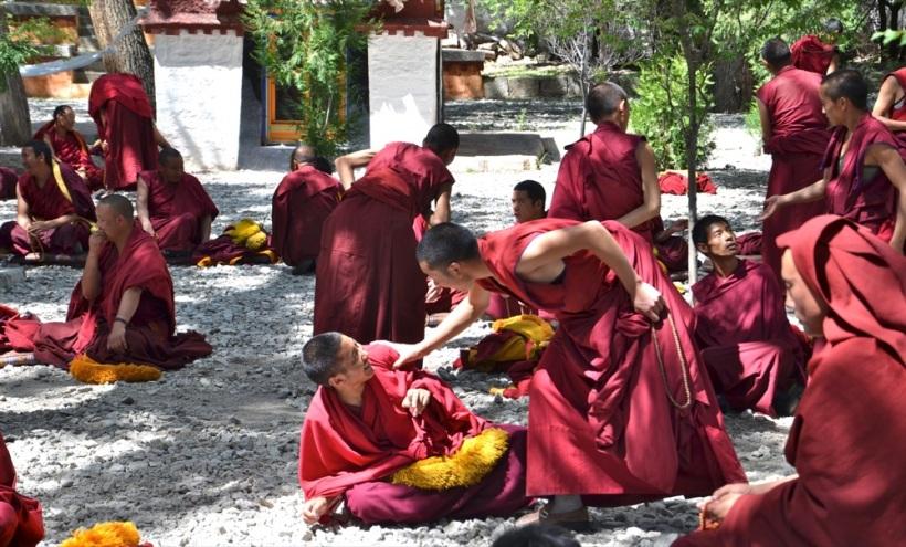 Tibet_RondoneR17