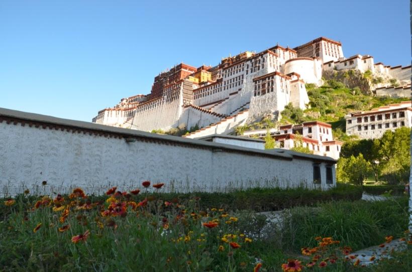 Tibet_RondoneR9